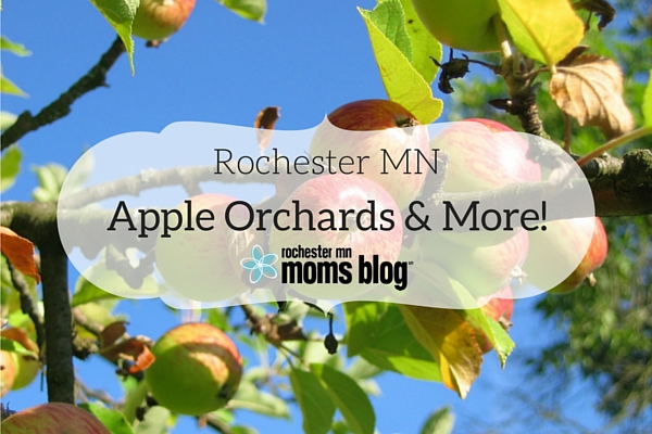 Apple Orchards and More | Rochester MN Moms Blog