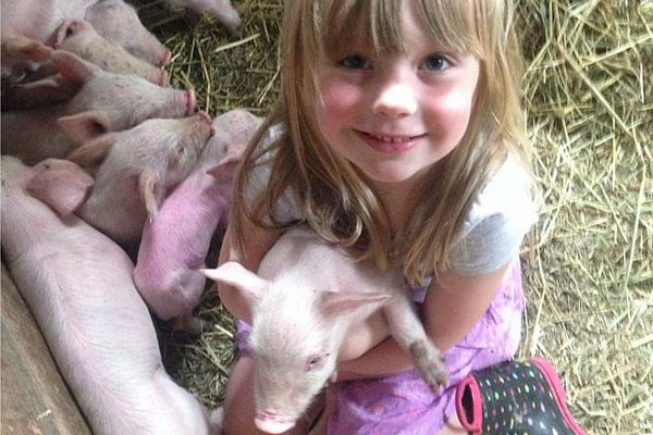 10 Reasons Raising Kids on the Farm is Awesome| Rochester MN Moms Blog