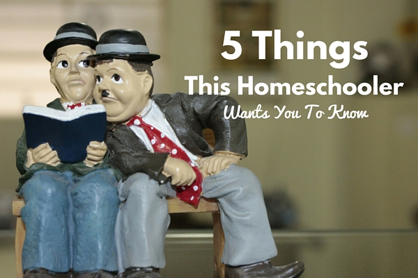 5 Things This Homeschooler Wants You To Know | Rochester MN Moms Blog