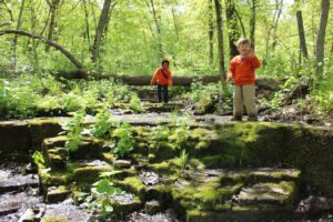 Take a Little Trip: Nerstrand Big Woods | Rochester MN Moms Blog
