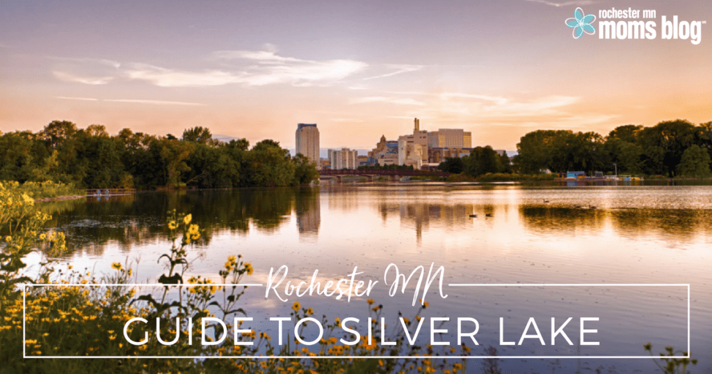rochester mn, roch mn, silver lake, rochester silver lake, geese, pool, skate park, bike playground, walking, things to do