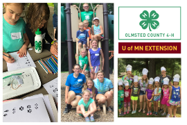 2019 Guide to Summer Camps in SE Minnesota - Olmsted County 4-H | Rochester MN Moms Blog
