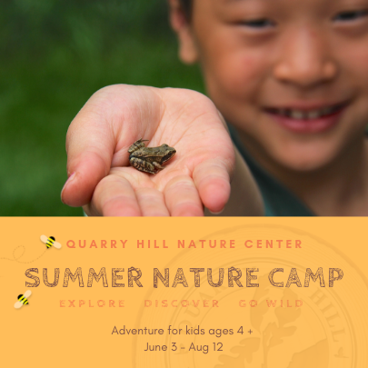 2019 Guide to Summer Camps in SE Minnesota - Quarry Hill Nature Center | Rochester MN Moms Blog