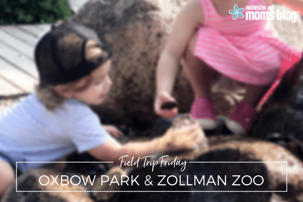 animals, Field trips, hike, hiking, interactive activities, oxbow park, oxbow park and zollman zoo, picnic, summer fun, Zollman Zoo, zoo
