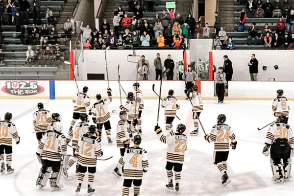 Cheer On A Rochester Mn Sports Team