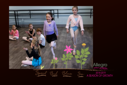 Allegro School of Dance & Music - Guide to Summer Camps in SE Minnesota | Rochester MN Moms Blog