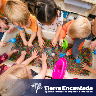 early education and preschool