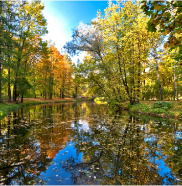 river, trees in autumn